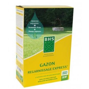 Gazon Regarnissage Express BHS